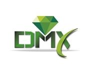 Logo DMX Solo (1)